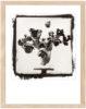 Tulpen Kallitypie - Fine Art Print von Thilo Nass