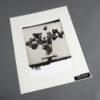 Tulpen Stilleben - Kallitypie von Thilo Nass